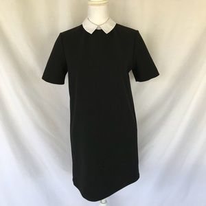 Zara Woman Black Peter Pan Collar Dress Size S
